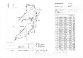 Savioro katastriüksuse plaan. Maamõõtja A. Kirisaare.